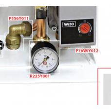 R225Y001 Pressure Gauge 0-6 bar for HIU